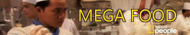 Mega-Food-1