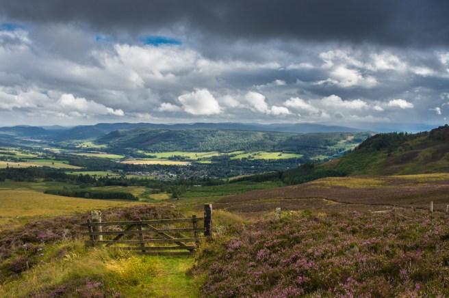 Scottish Moors.jpg
